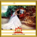 Королевская свадьба - Лучшая шоу программа на свадьбу